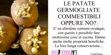patate-germogliate